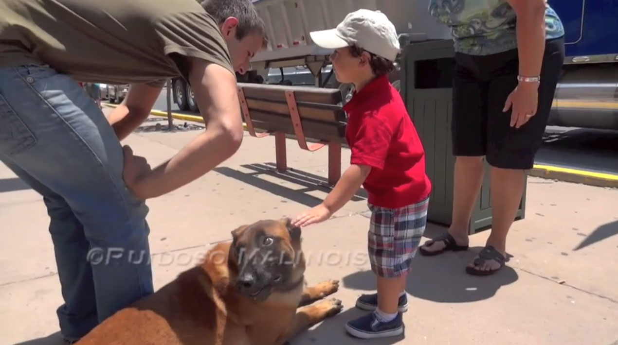 Video - Malinois With Children